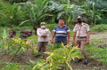 Dorong Ragam Komoditas Baru, Karantina Pertanian Manado Gelar Safari Ekspor