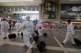 IATA Ciptakan Aplikasi Pemantau Kesehatan Penumpang Pesawat Udara