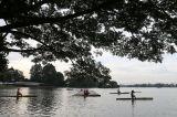 Persiapan Hadapi PON XX, Atlet Dayung Banten Berlatih Rutin di Situ Cipondoh