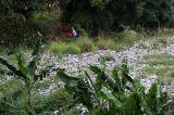 Lautan Sampah di Kampung Caman Bekasi
