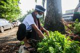 Rayakan HUT DKI ke-494, Petugas Suku Dinas Kehutanan Ciracas Gunakan Pakaian Adat Betawi