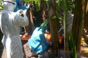 Pasien ODP Meninggal di Kebun Gegerkan Warga Mappadaelo Kabupaten Wajo