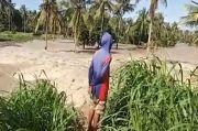 Sungai Bila Meluap, Ratusan Hektare Tanaman Palawija Rusak