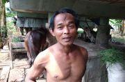 Pandemi Corona, Kondisi Kuda Delman di Jakut Memprihatinkan