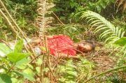 Tragis, Petani di Muratara Tewas Terinjak Gajah Liar