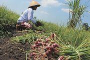 INAgri : AWR Kementan Pecahkan Persoalan Data Pertanian