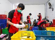 Bantu Masyarakat Jelang Lebaran, SiCepat Potong Ongkos Kirim