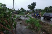 BMKG: Hingga Jumat Besok, Lampung Masih Berpotensi Hujan Lebat Disertai Angin Kencang