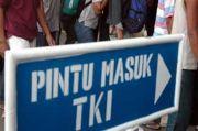 Tiba di Surabaya, 132 TKI Langsung Jalani Karantina