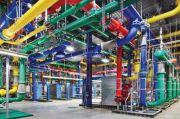 Pusat Data Google Diganggu Kawanan Sapi