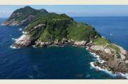 Ular yang Memangsa Ular Hidup di Pulau Paling Mematikan Ini