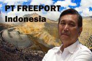 Luhut: Pemerintah Akan Hentikan Model Investasi Seperti Freeport