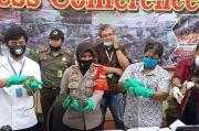 Polisi Bandara Soetta Gagalkan Penyelundupan 153 Reptil Papua