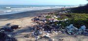 Signify Ubah Kemasan Plastik pada Konsumen menjadi Kertas