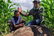 Prasasti Gondang, Situs Peninggalan Kerajaan Singosari yang Usang