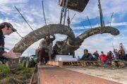 Dikira Pagar Kayu Tua, Ternyata Tengkorak Gajah Purba Berusia 15.000 Tahun