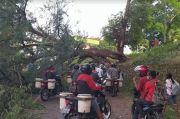 Jalan Tertutup Pohon Tumbang, Akses Trans Flores Lumpuh selama 12 Jam