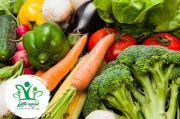 Sayur Kendal dan MAPORINA Kembangkan Bibit Sayur Unggulan