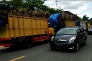 Antrean Truk Masuk Pabrik Gula Mengular, Jalur Blitar-Malang Macet