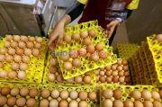 Tak Ada Penerimanya, 1,2 Ton Telur Bansos di Jabar Dimusnahkan
