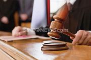 Aktivis AGN Minta Kasus Sarang Burung Walet Bengkulu Dibawa ke Pengadilan