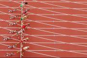 Ratusan Atlet Dapat Bantuan Keuangan di Tengah Wabah Corona