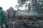 Pemerintah Klaim Kebakaran Hutan dan Lahan Berhasil Diminimalisir