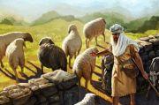 Kisah Dua Malaikat yang Membelah Dada Nabi Saat Balita