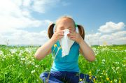 Alergi Tingkatkan Risiko Penyakit Degeneratif