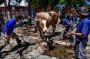 Masih Banyak Zona Merah, Warga Tanah Abang Diminta Tidak Saksikan Pemotongan Hewan Kurban