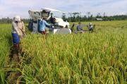 Kementan dan Kementerian PUPR Sinergi Bangun Food Estate di Kalteng