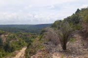 Sengketa lahan di Asahan, Kelompok Tani Pasada Lestari: Itu Hutan Kami