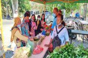 Dinas TPH Bantu Pasarkan Hasil Kebun Petani Lokal