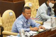 Menteri Edhy Pagari Regulasi Ekspor Lobster