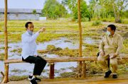 Jokowi: Cadangan Strategis Pangan Diurus Menhan
