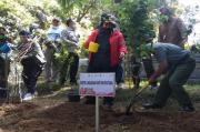 Kementerian LHK Pantau Pengembangan Pohon Sakura di Gunung Lawu