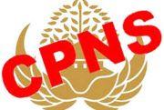 Pemprov Sulsel Ikuti Kebijakan Pusat Soal Rekrutmen CPNS