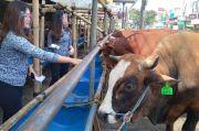 Pasokan Hewan Kurban Turun, Penjual di Depok Terapkan Protokol Kesehatan