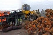 Potensi Ekspor Cangkang Sawit ke Jepang Capai 100 Miliar Yen