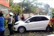 Cuaca Ekstrem, Pohon Tumbang Timpa 2 Mobil di Kabupaten Wajo