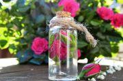 Selain buat Kecantikan Kulit, Air Mawar Juga Sangat Bermanfaat untuk Rambut