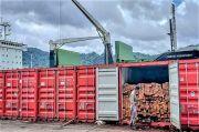 Kayu Kelapa Asal Tahuna Diminati Pengusaha Pulau Jawa