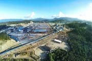 Lahan Gratis buat Investor demi Memerangi Industriawan Tanah