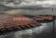 Banjir Rendam Watalipue Wajo, Ketinggian Air hingga Atap Rumah Warga