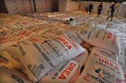 Di Tengah Pandemi, Penjualan Pupuk Indonesia Kian Subur