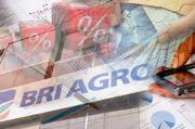 BRI Agro Salurkan Seluruh Jatah KPR Subsidi Hanya di Semester I 2020