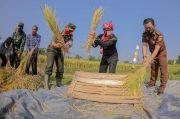 Lahan Pertanian Kota Bogor Tersisa 131 Hektare, Bima Arya: Jaga Surga yang Tersisa