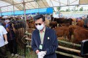 Mentan Dorong Sulsel Jadi Lokomotif Ternak Sapi Kerbau Nasional