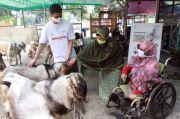 Mandiri Syariah Catat 850 Transaksi Pembelian Hewan Kurban Via Online