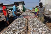 Pakai OSS, Urus Ijin Pengolahan Ikan Tak Perlu Tatap Muka dan Gratis